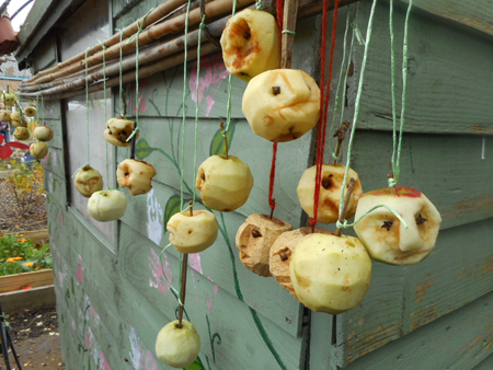 Carved apple heads